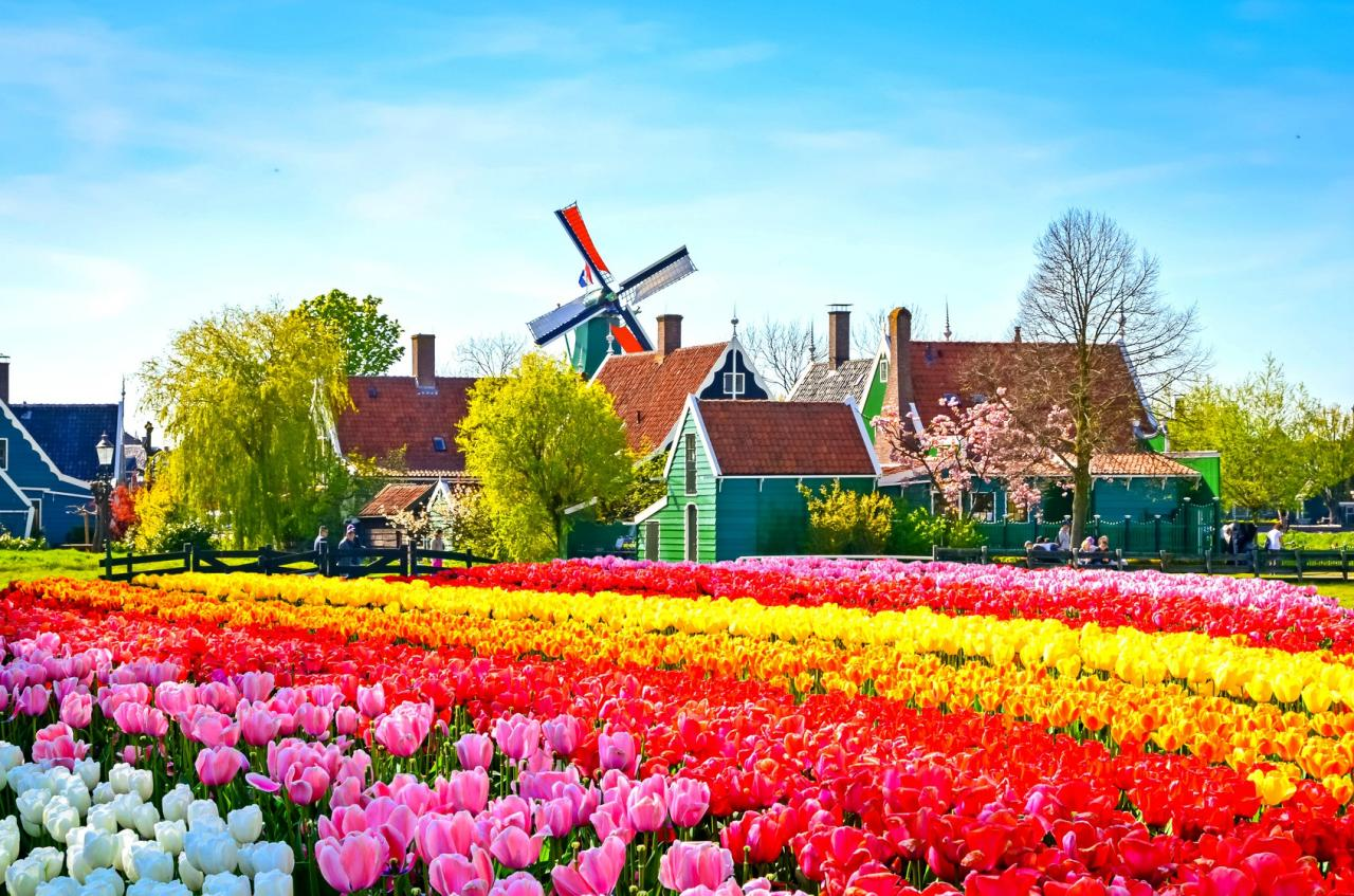 Image result for Zaanse Schans